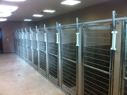 Shoreline Dog Kennel Suites